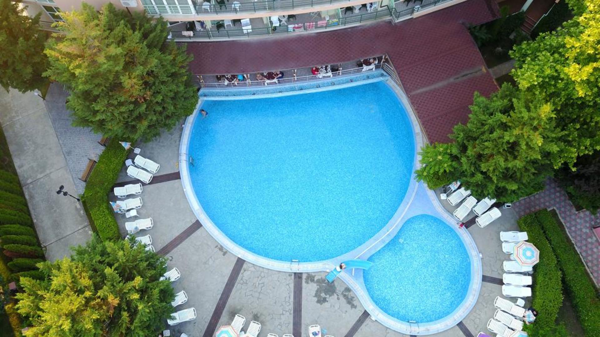Отель пальма солнечный берег отзывы фото