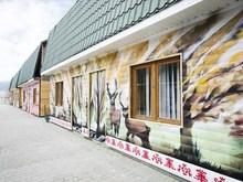Younge Art Camp (ex. Дом Юнге), База отдыха
